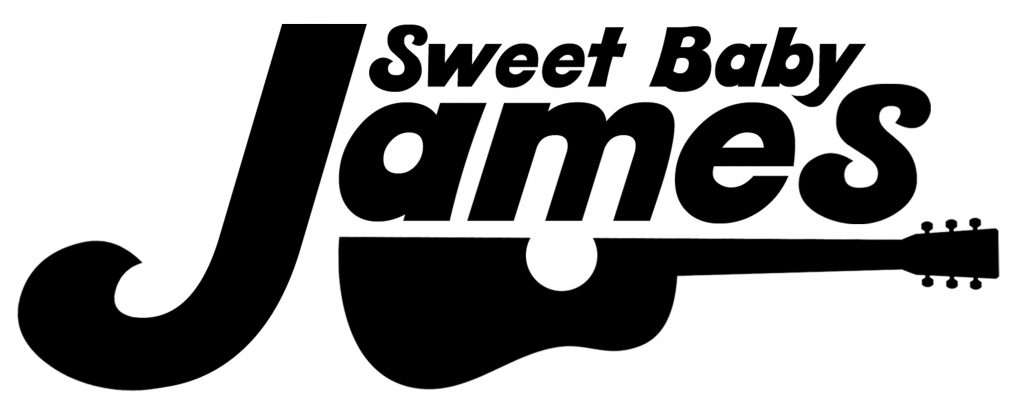 James Taylor tribute band
